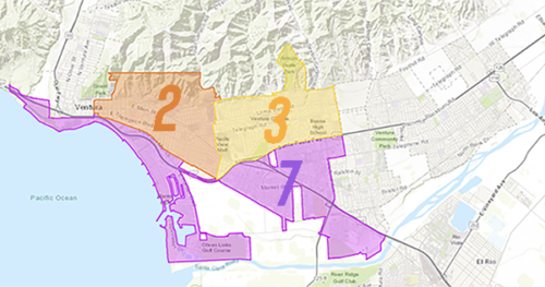 Vote By District For Campaign Issues 2020
