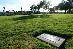 no money for Cemetery Park
