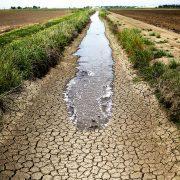 Ventura's water shortage